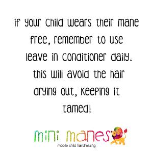 Mini Manes Hair Care Tips